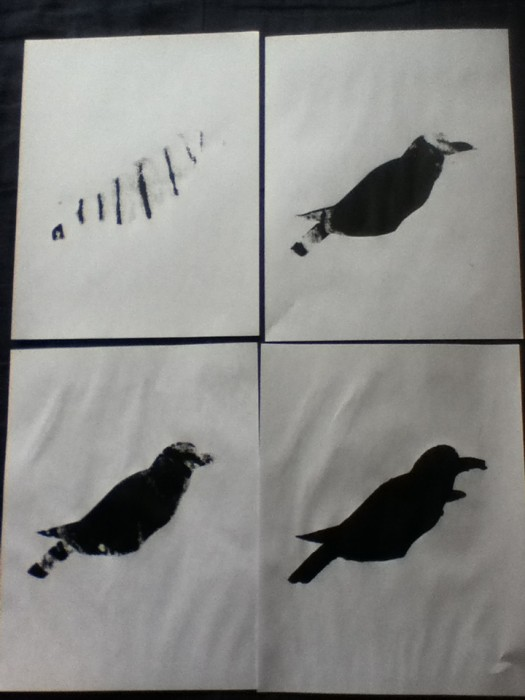 Raven Screenprints